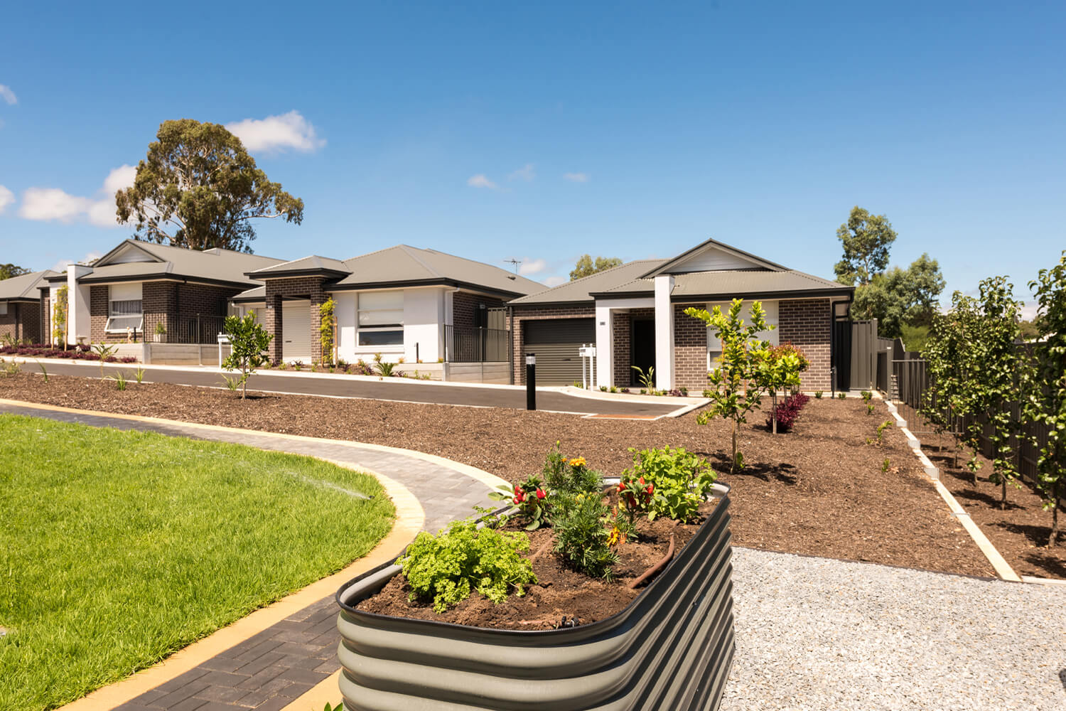 Penneys Hill Estate Landscaping Design Normus Urban Projects